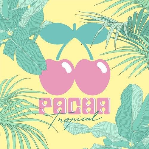 Pacha Tropical