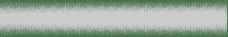 The Digital Kid versus The World - Total Control (Original Mix) [Classic Music Company] Waveform