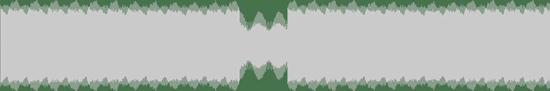 Christian Wunsch - Bleeding Walls (Original Mix) [Tsunami Records] Waveform