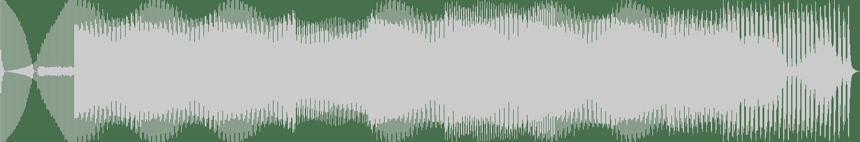 Geranimo & Mikey - Walk the Dog (Techno Mix) [Atlantic Jaxx] Waveform