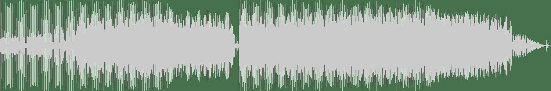 Vladimir Virus - Dynamic (Original Mix) [LDN Trax] Waveform