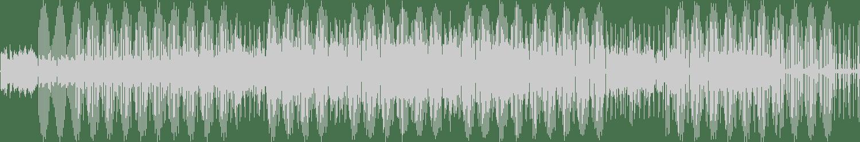 Walking Shadow - Without You (Original Mix) [Dessous Recordings] Waveform
