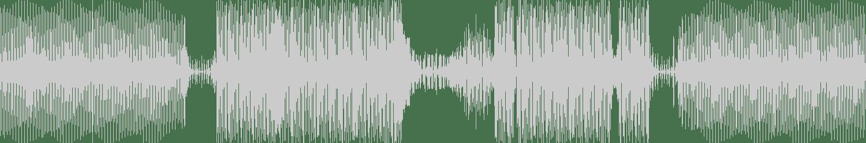Dieter Horndasch - Zebras Lotion (Original Mix) [Boeing Records] Waveform