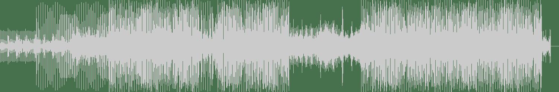 HLZ - Circus Shot (Original Mix) [Dispatch Recordings] Waveform