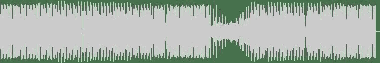 Roberto - Triage (Original Mix) [Fossil Archive] Waveform