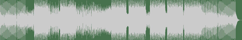 Jon Flores, David Rodriguez - Sabroson (Alma Remix) [Bedroom Muzik (Back Cat)] Waveform