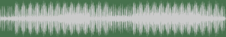 Benjamin Fröhlich - Ghost Orchid (Cleveland Remix) [Permanent Vacation] Waveform