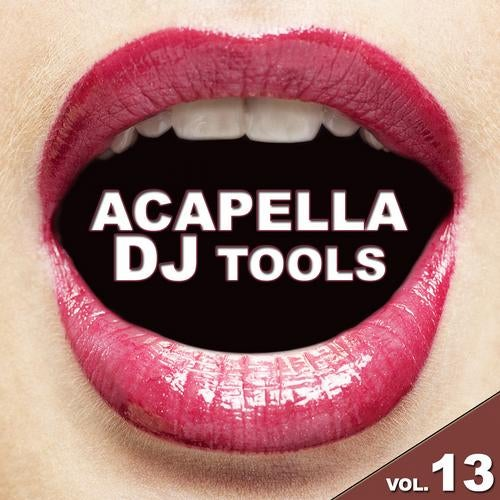 Acapella DJ Tools Vol. 13