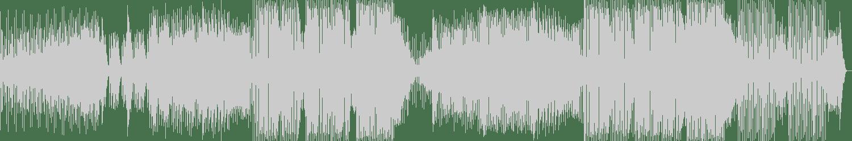 DiscoTech, Joe Maz - Horns (Original Mix) [Pyro Records] Waveform