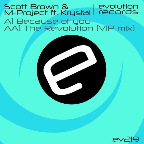 Because of You / The Revolution (VIP Remix)