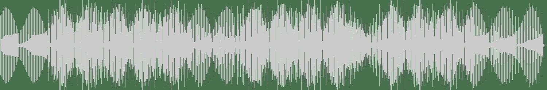 Steve Bug, Cle, Apes Go Bananas - Kerri On (Langenberg Remix) [Dessous Recordings] Waveform