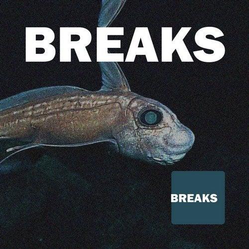 Breaks Best of 2017 - Collection Atmospheric & Vocal, Progressive Breaks