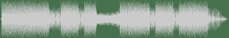 Damir Ludvig, Ivana Masic - Things feat. Ivana Masic (Instrumental Mix) [Music Is The Answer] Waveform