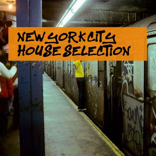 New York City House Selection