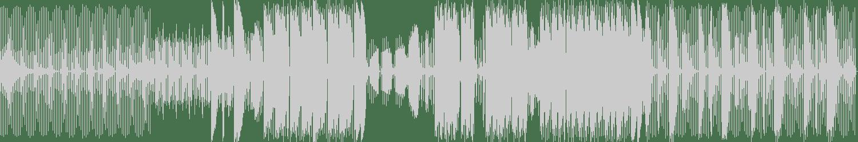 Lenny Kiser - Blip Bloop (Original Mix) [Trippy Ass Technologies] Waveform