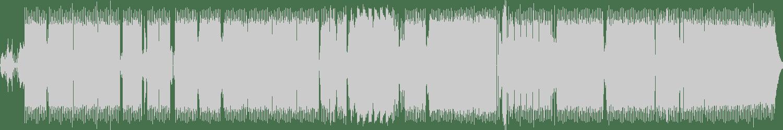 Loose Connection - Puzzle Box (Original Mix) [Damaru Records] Waveform