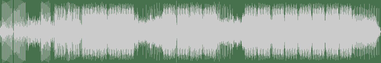 Kaiser Gayser - Divine (Kaizer the DJ Remix) [Insomniafm] Waveform