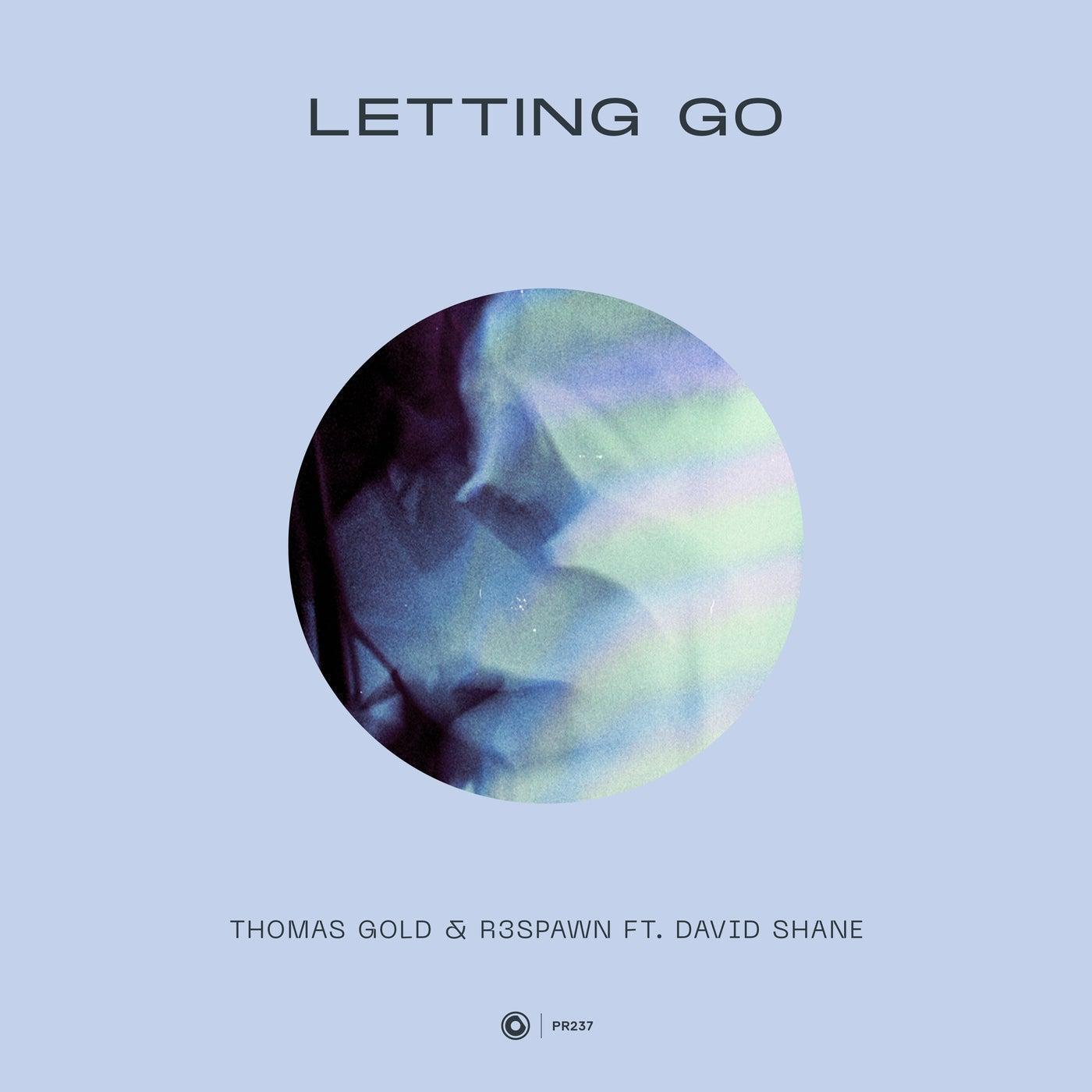 Letting Go feat. David Shane