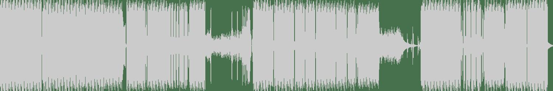 D.N.S, ROBUST Techno - The End (Original Mix) [Endzeit] Waveform