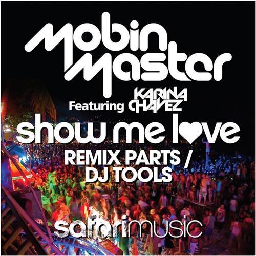 Show Me Love Remix Parts / DJ Tools