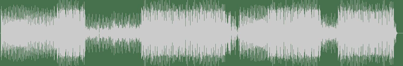 DJ Icey - Wanderer (Original Mix) [Zone Records] Waveform