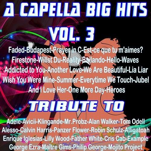 A Capella Big Hits, Vol. 3 (A Capella Versions)