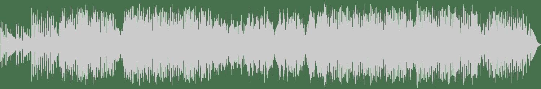 Nicolas Haelg - Mind Games (Original Mix) [The Bearded Man (Armada)] Waveform