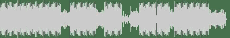 dubspeeka - Ten Tigers (Original Mix) [Natura Viva Black] Waveform