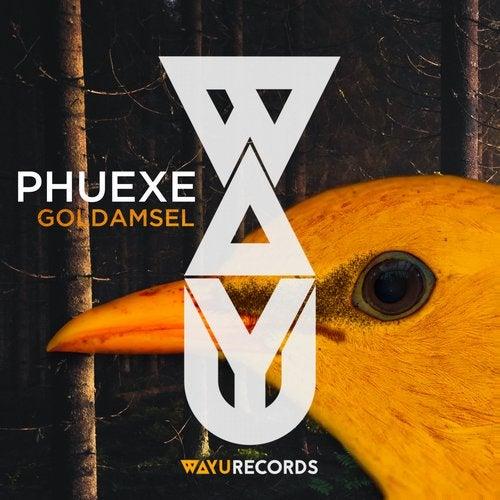 WAYU007 - Phuexe - Goldamsel
