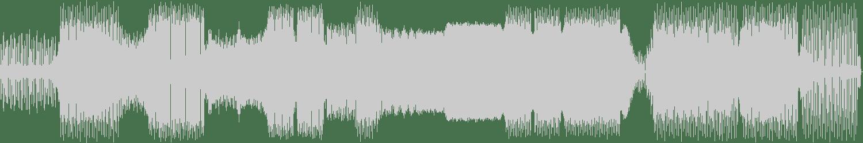 Mallorca Lee, Sam Starr - Netwerk (Mac & Taylor Remix) [Fraction Records] Waveform
