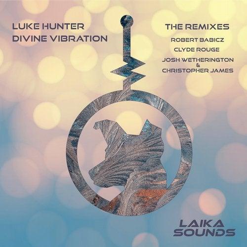 Divine Vibration Remixes