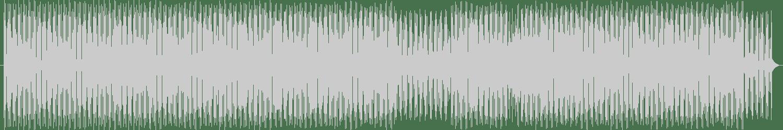 Sean Rooney - Torpse (Original Mix) [Vindico Records] Waveform