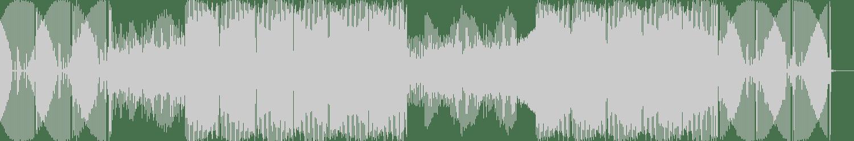 DJ Dan - Tribute To Voodoo Ray (Original Mix) [Nettwerk Records] Waveform