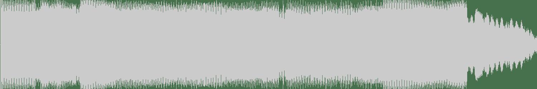 DJ Loser - Desire Without Emotion (Original Mix) [VEYL] Waveform