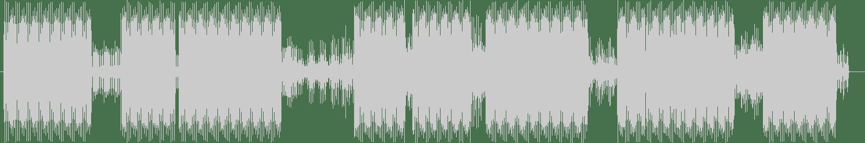 Lasha & Lasha - Anesthesia (Original Mix) [DataTech] Waveform