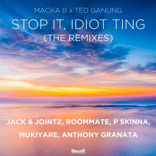 Macka B, Ted Ganung - Stop It, Idiot Ting (The Remixes) (DVR0049)