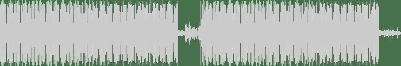 Davide Cali - The Samurai Sword (Original mix) [Animus] Waveform