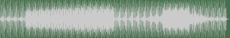 Dr. Basement - Going Crazy (Original Mix) [SCTY] Waveform