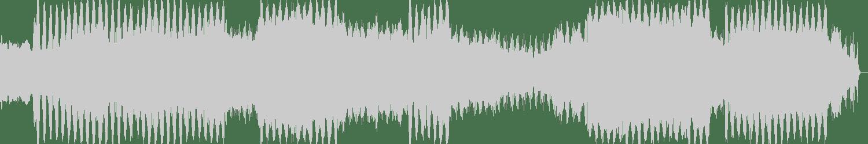 Steve Nash - Taubenhaucher (Basti Grub Remix) [HiFi Stories] Waveform