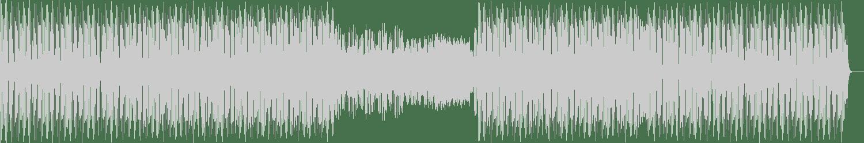 Sean Biddle, Rescue - Direct Connect (Original Mix) [Guesthouse Music] Waveform