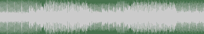 PACCI - This Much Power (Original Mix) [2zDigital] Waveform