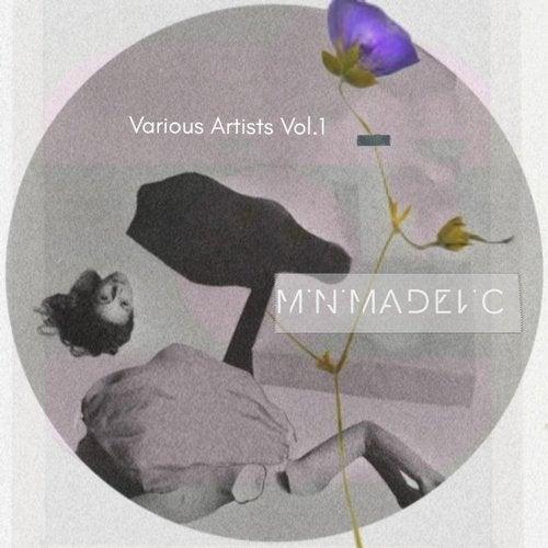 Minimadelic V.A, Vol. 1