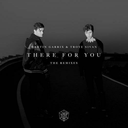 Martin Garrix, Troye Sivan - There For You (Dzeko Extended Remix)