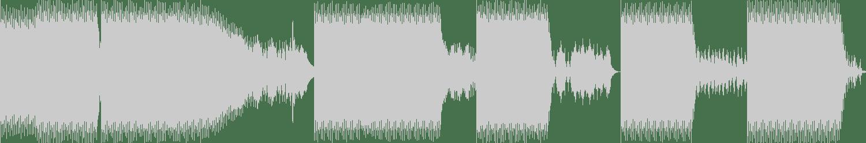 Dennis Slim - What the Fuck (Original Mix) [Dark Celebrate Recordings] Waveform