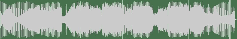 CrazYdeejay - The Summer Is Crazy (Palmez XXX Extended Mix) [Soundrise Records] Waveform