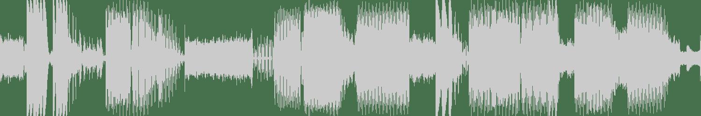 Mandragora - Fake Acid (Original Mix) [Alien Records] Waveform