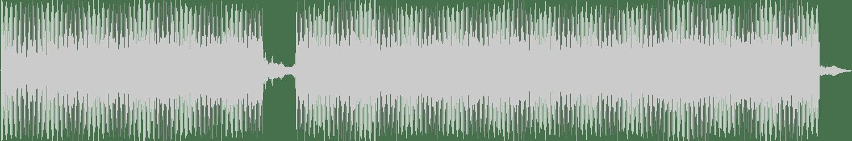 Submerge, Ricardo Garduno - The Souls of Humanity (Original Mix) [Illegal Alien Records] Waveform