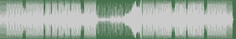 Jaydee - Plastic Dreams (Nicole Moudaber Renaissance Remix) [Renaissance Records] Waveform