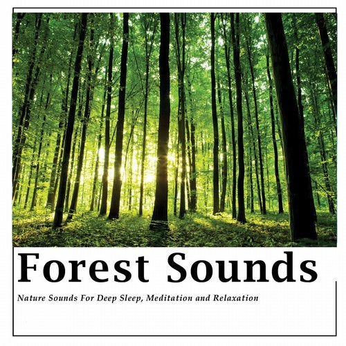 Forest Sounds -Pure sounds of nature for relaxation,deep sleep and meditation