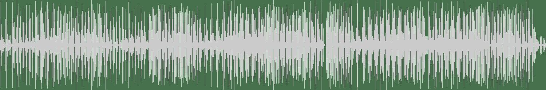 Dima X - 4 Spanish Cats (Original Mix) [Sanex Music] Waveform